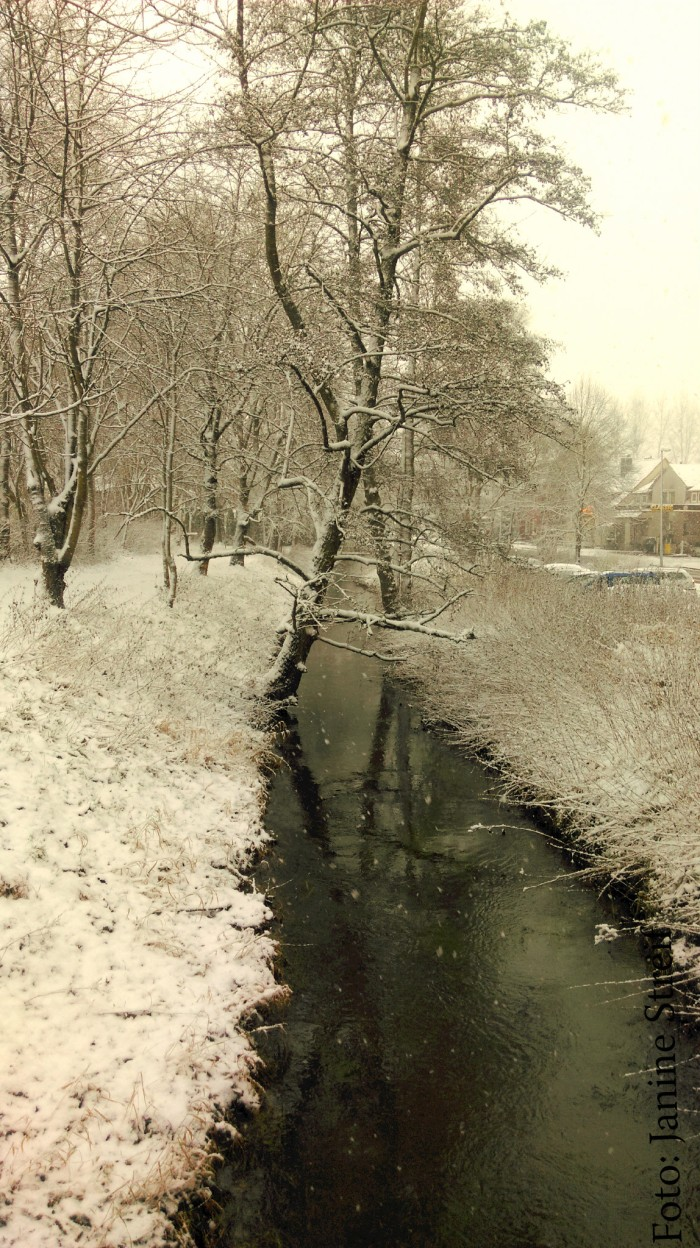 Schnee in Adelebsen 1