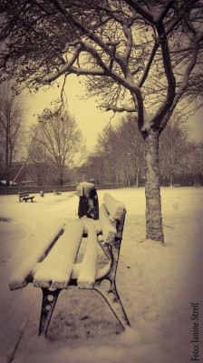 Schnee in Adelebsen 2