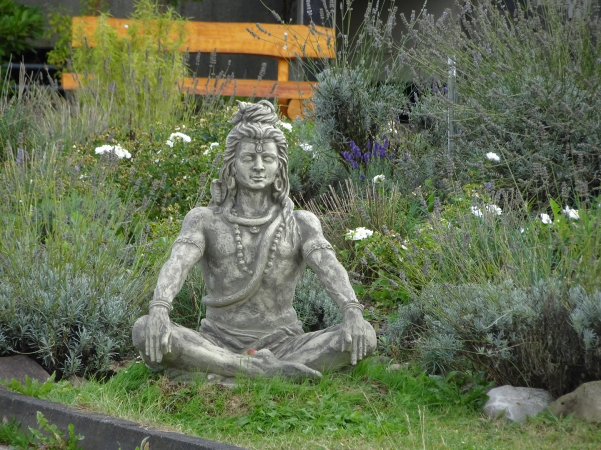 Yoga-Vidya individuell